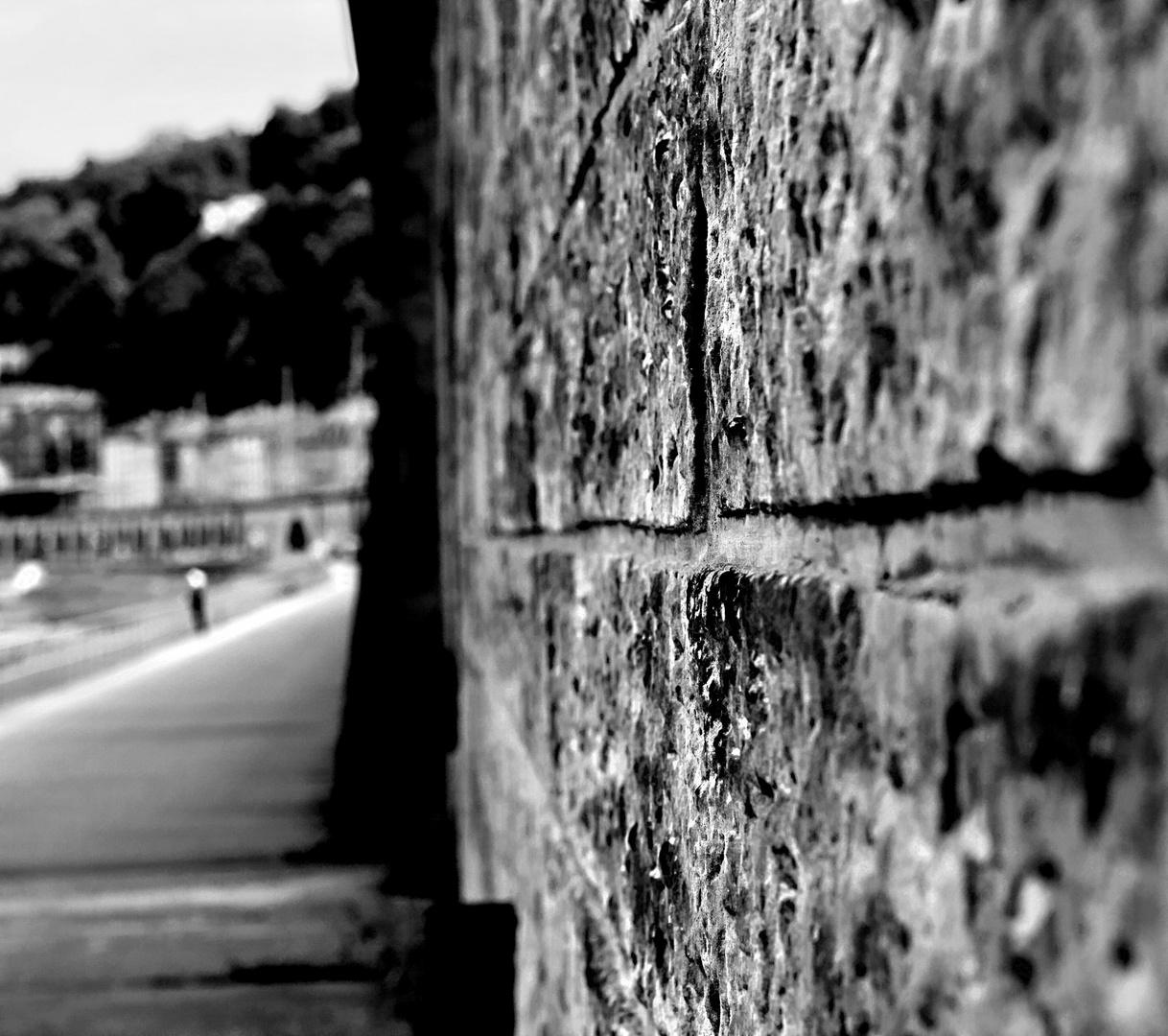 Elbufer unterhalb der Festung Königstein