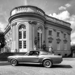 Eleanor - Ford Mustang Shelby GT500