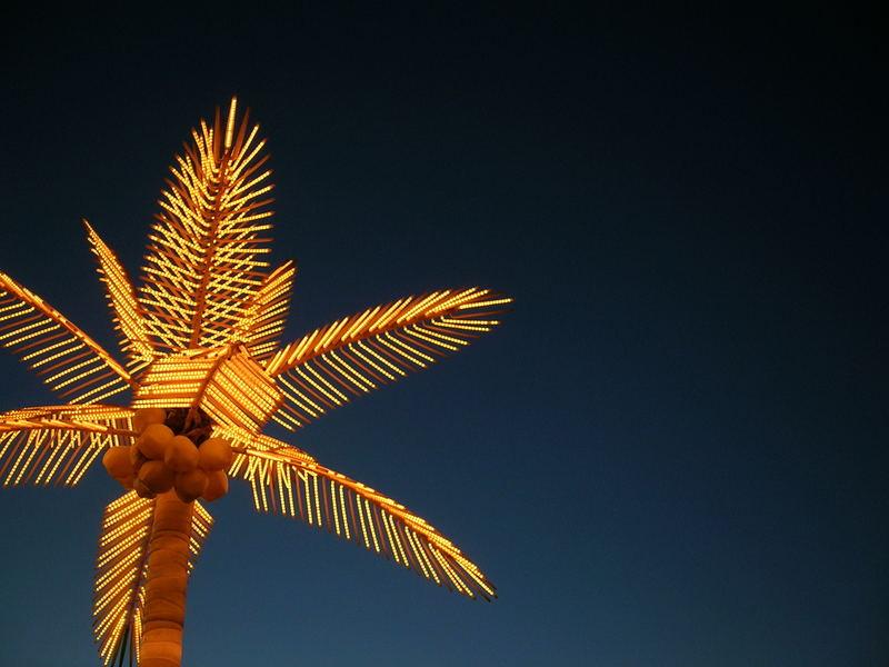 electric palm