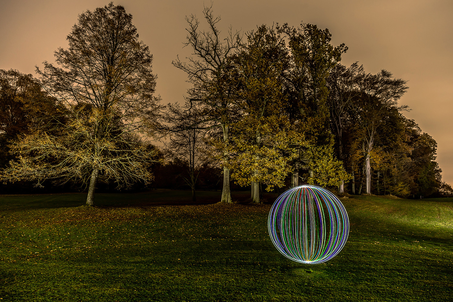 Electrical Movements in the Dark #241 - Autumn Mood (2)