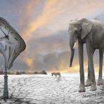 Elefant Surreal