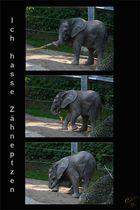 Elefanten-Baby-Sorgen :-)