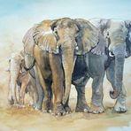 Elefanten und Staubwolke