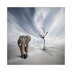 Elefantenbändiger Hurvinek