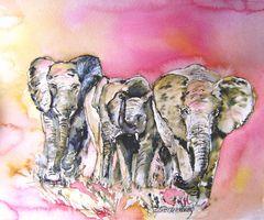 Elefantenfamilie im Abendlicht