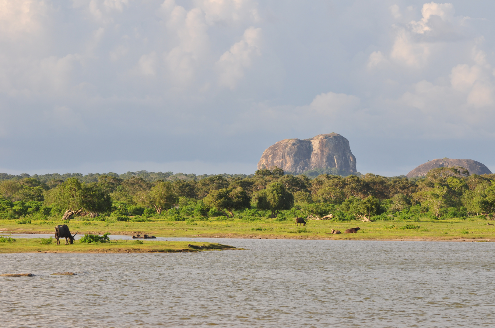 Elefantenfelsen im Yala-Nationalpark