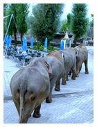 Elefantenkolonne