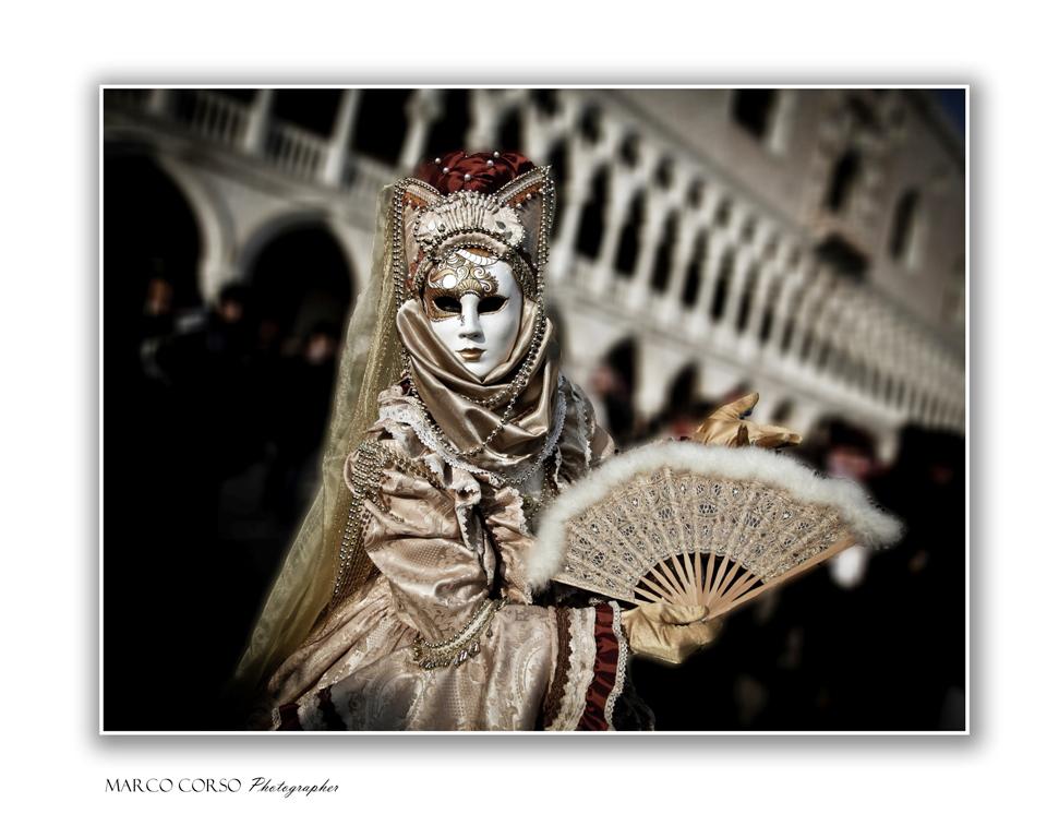 Elegantemente Venezia