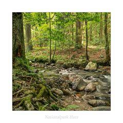 """Elendstal / Harz """" so schön und Wild ist unser Harzer Land******...."""""""