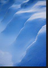 Elephant Island - Antarktis
