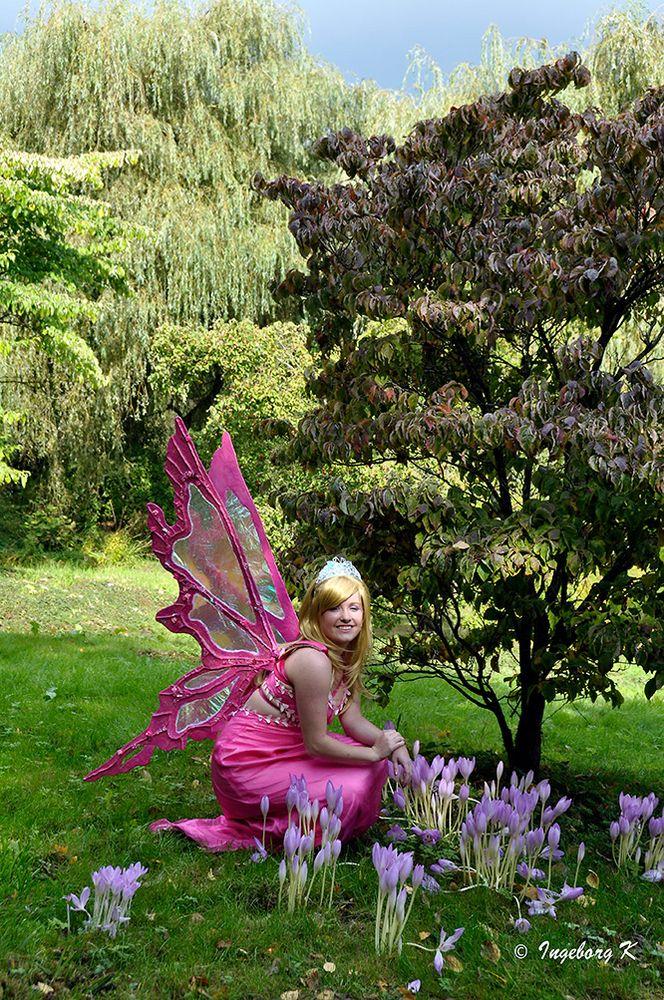 Elf Fantasy Fair in Arcen - 4