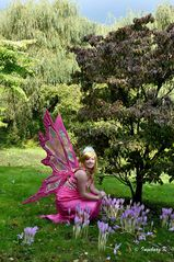 Elf Fantasy Fair in Arcen - 4