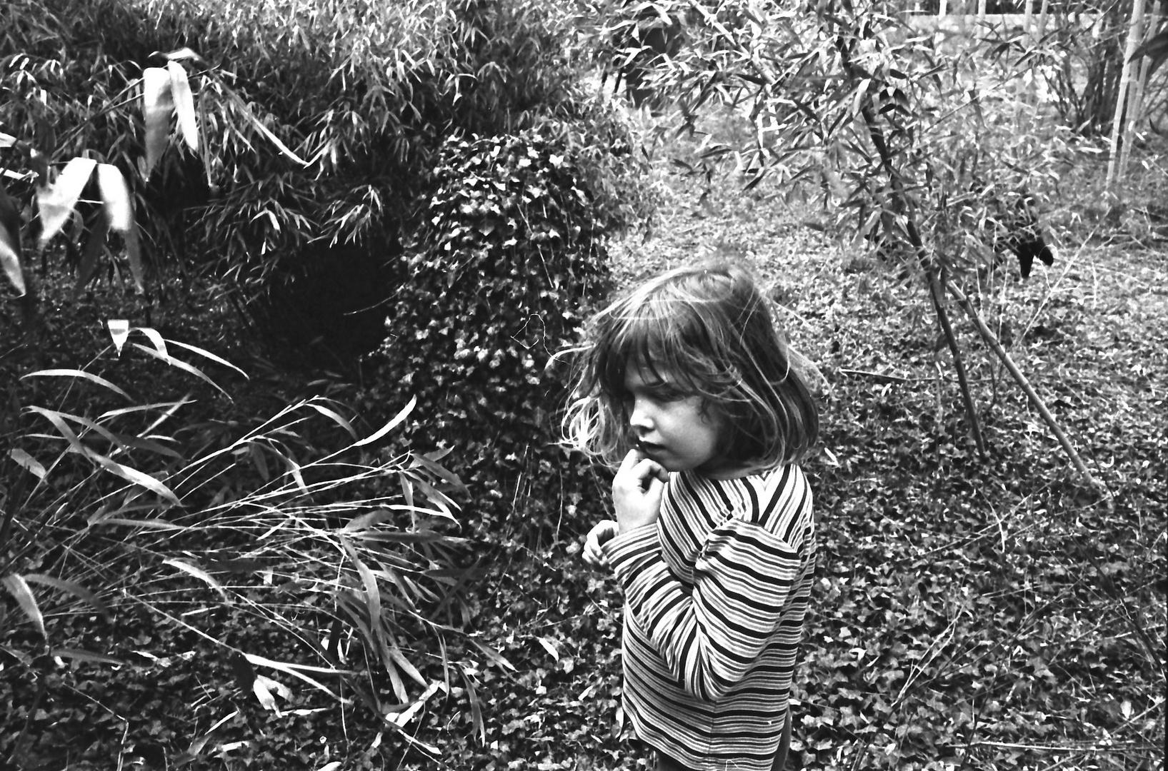Elfe im Bambuswald