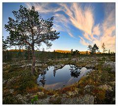 Elk-Land ... [5]