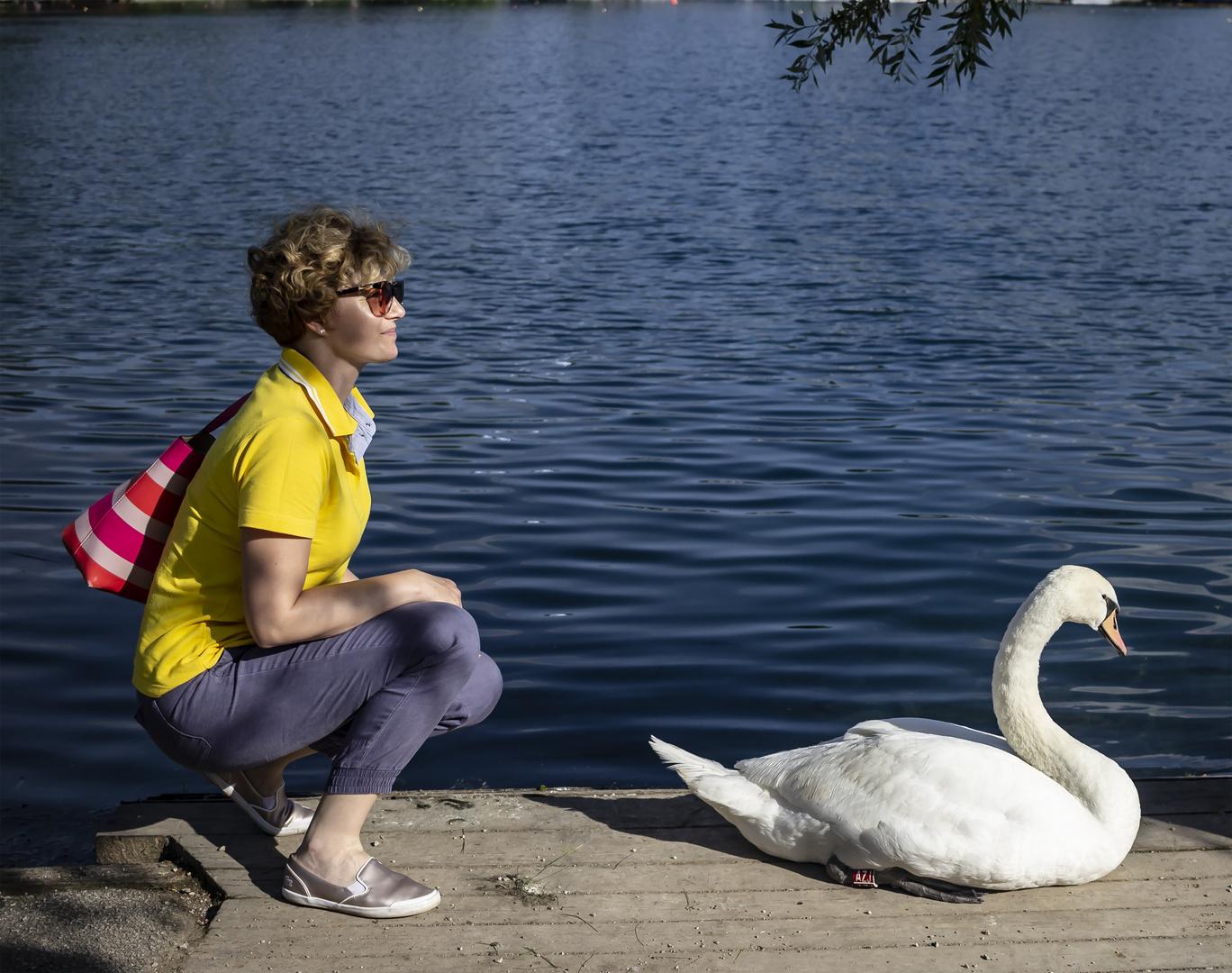 Ella y el cisne