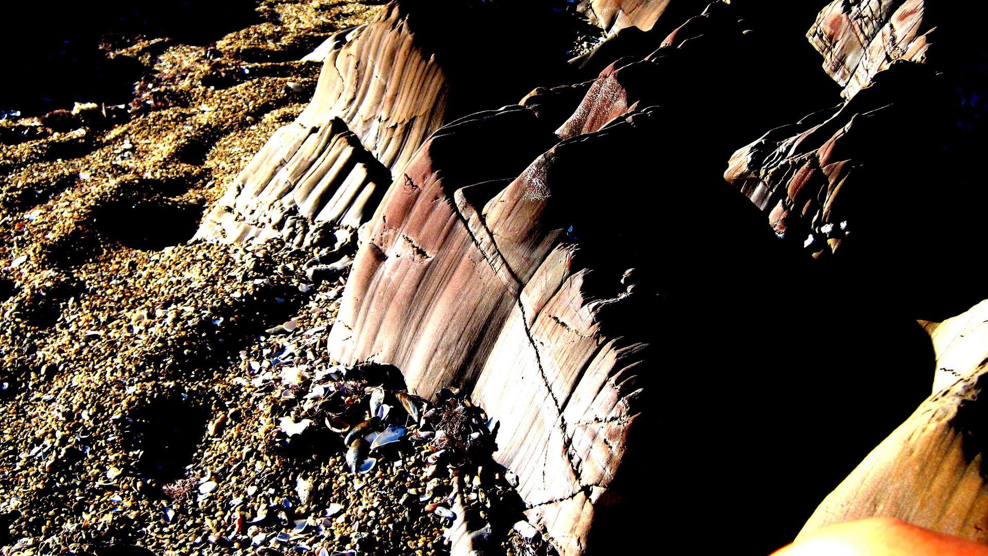 elmar y el viento escultores de la playa