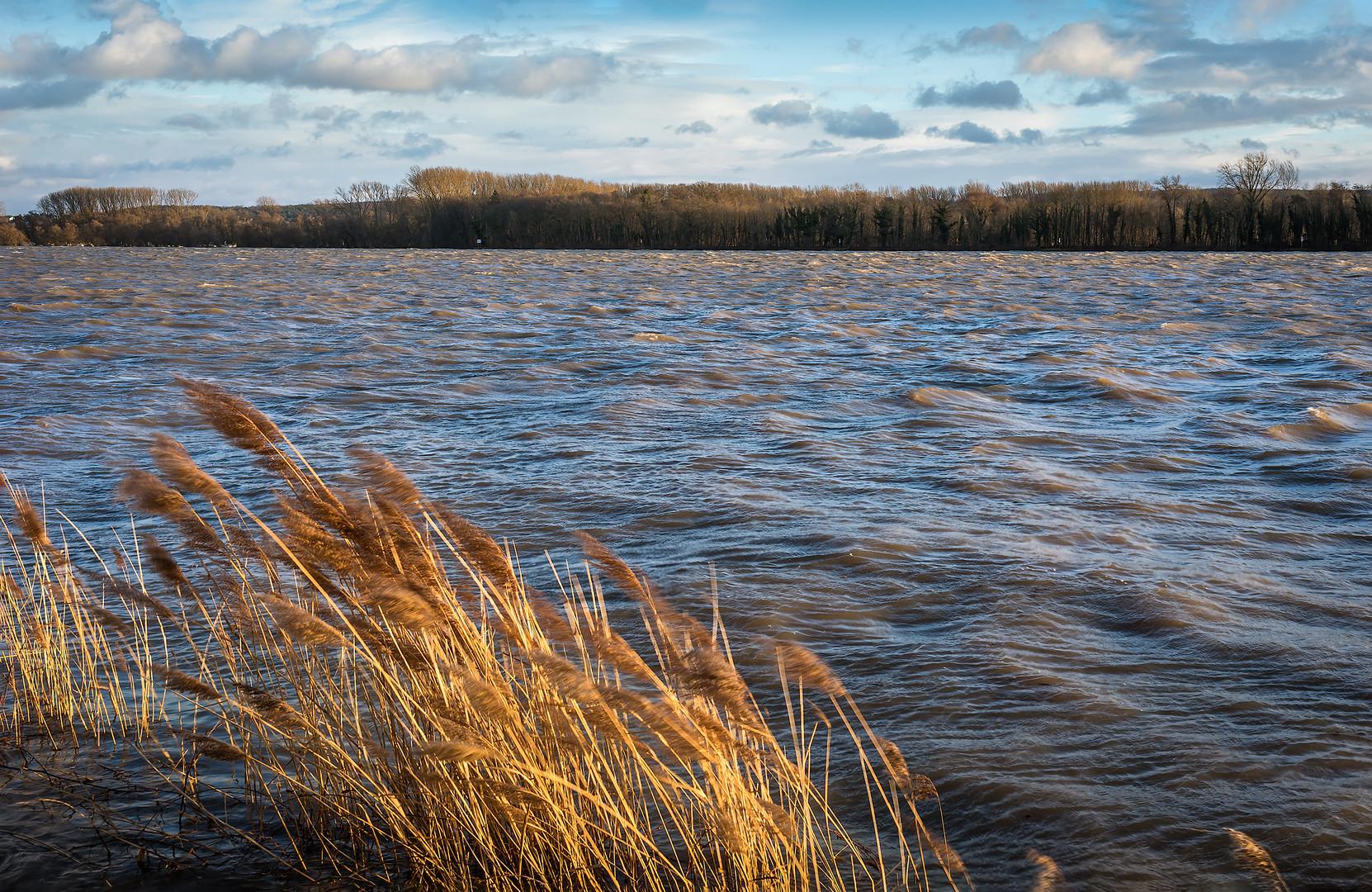 Eltville Der Rhein Bei Sturm 3 Januar 2018 Foto Bild
