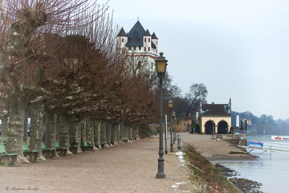 Eltville - Rheinuferpromenade - 20. Januar 2016