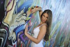 Elvira in der Graffiti-Unterwelt - 6 -