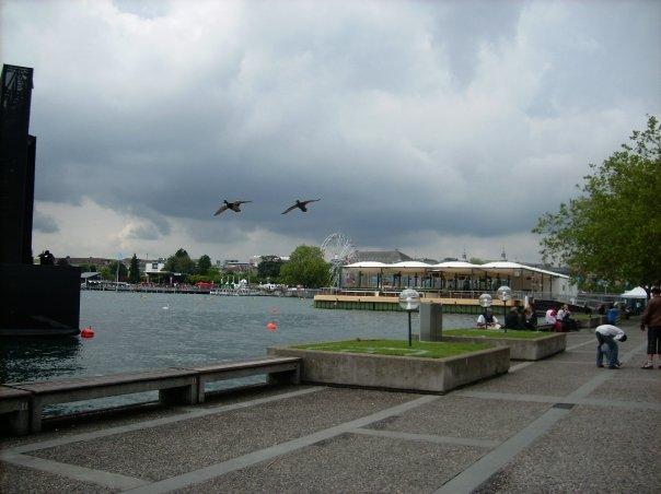 EM 2008 - Zürich (1)