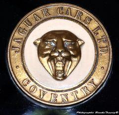 Emblem Jaguar
