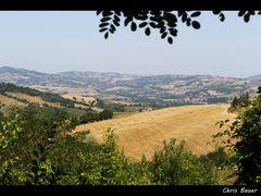 Emiglia Romagna, August 2013