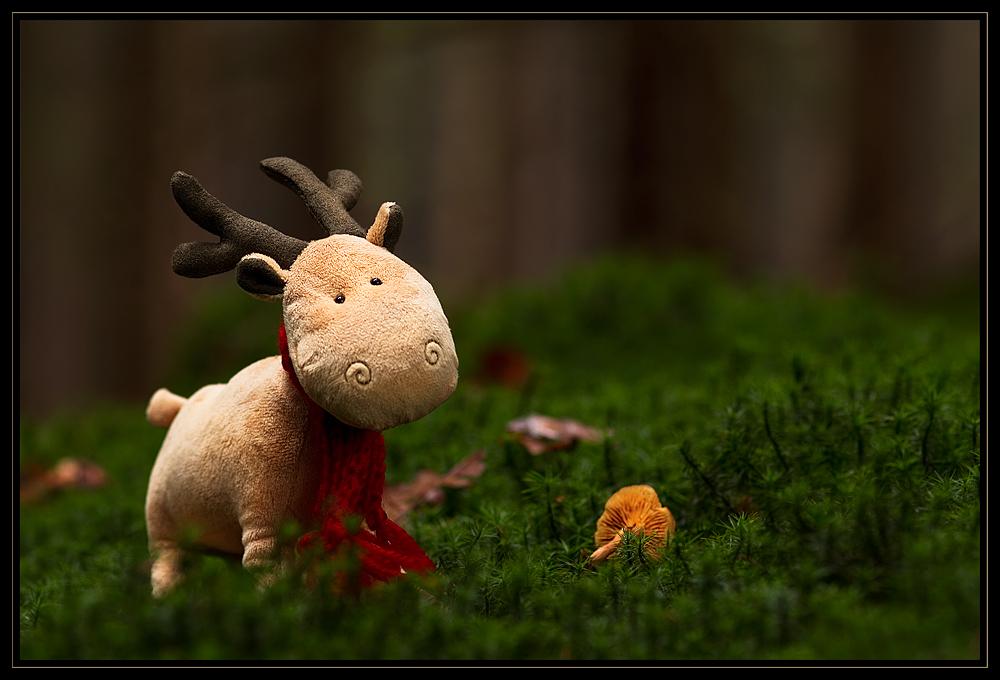 Emil, der Weihnachts-Elch