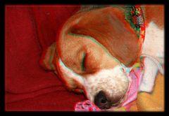 Emma beim 3D schlafen