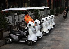 eMobilität Chinese Style
