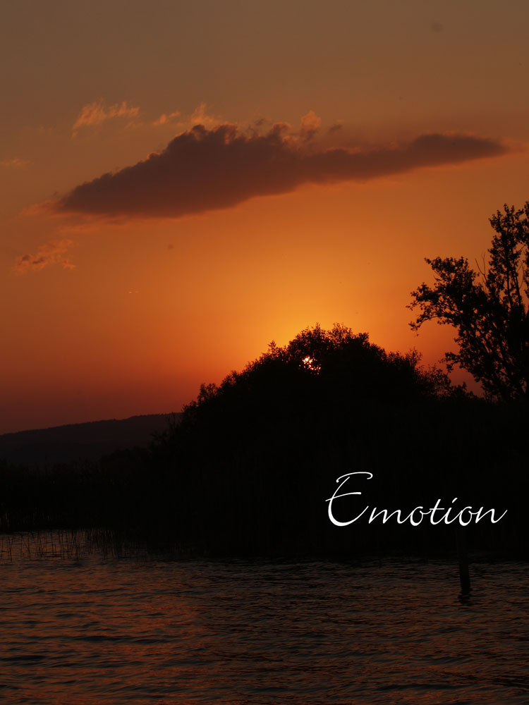 emotion - sonnenuntergang rapperswil