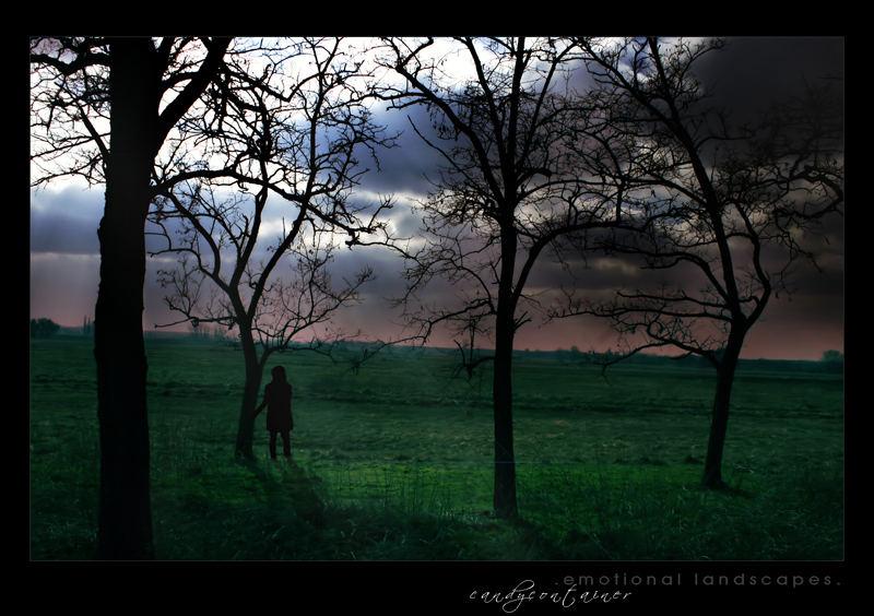 emotional landscapes