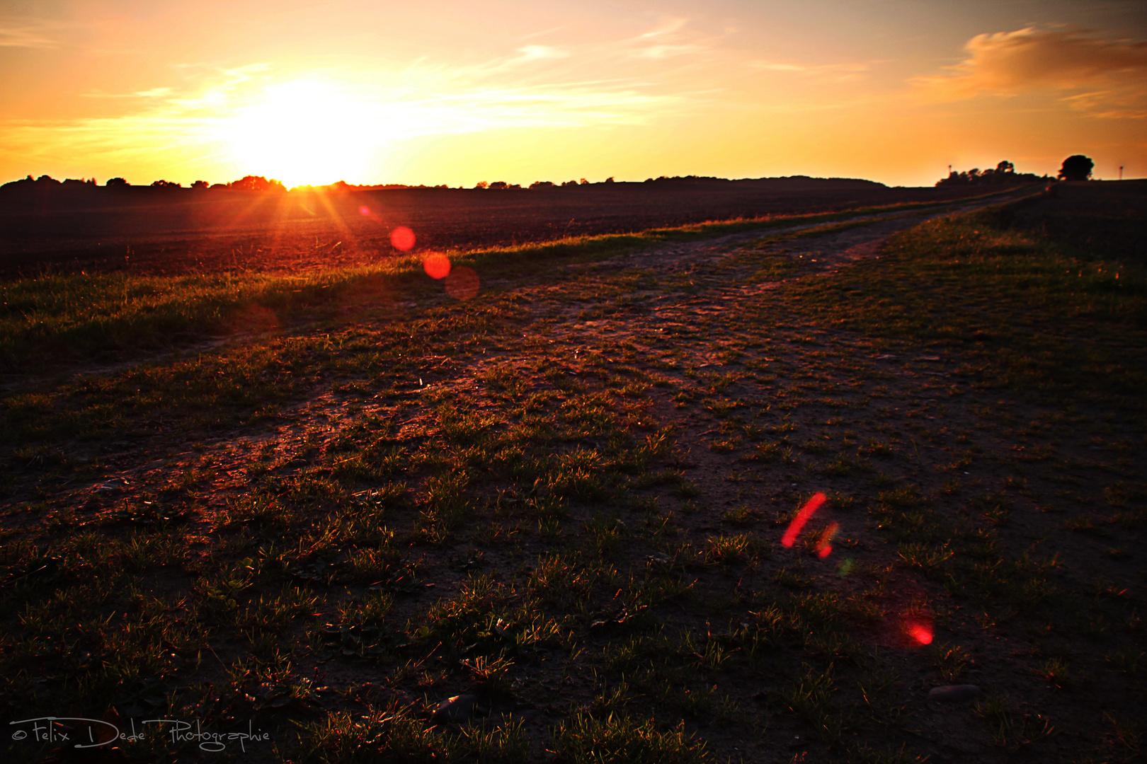 Emotional Sunset