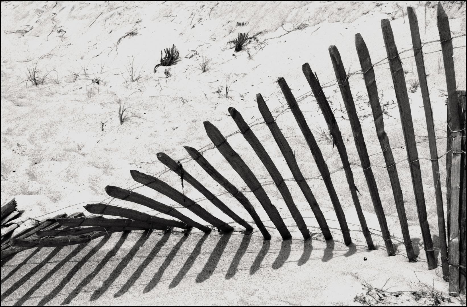emprunter le chemin des dunes