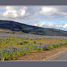 En bordure de piste en direction du Landmannalaugar