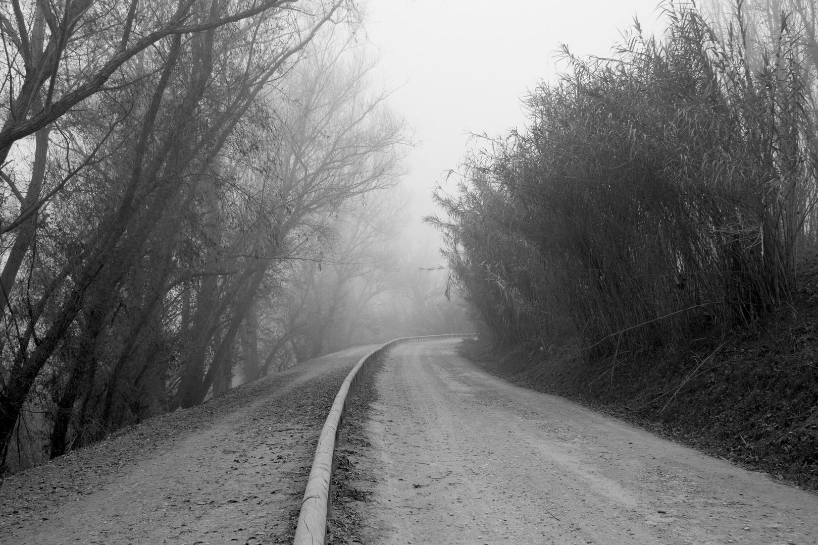 En el camino que se pierde