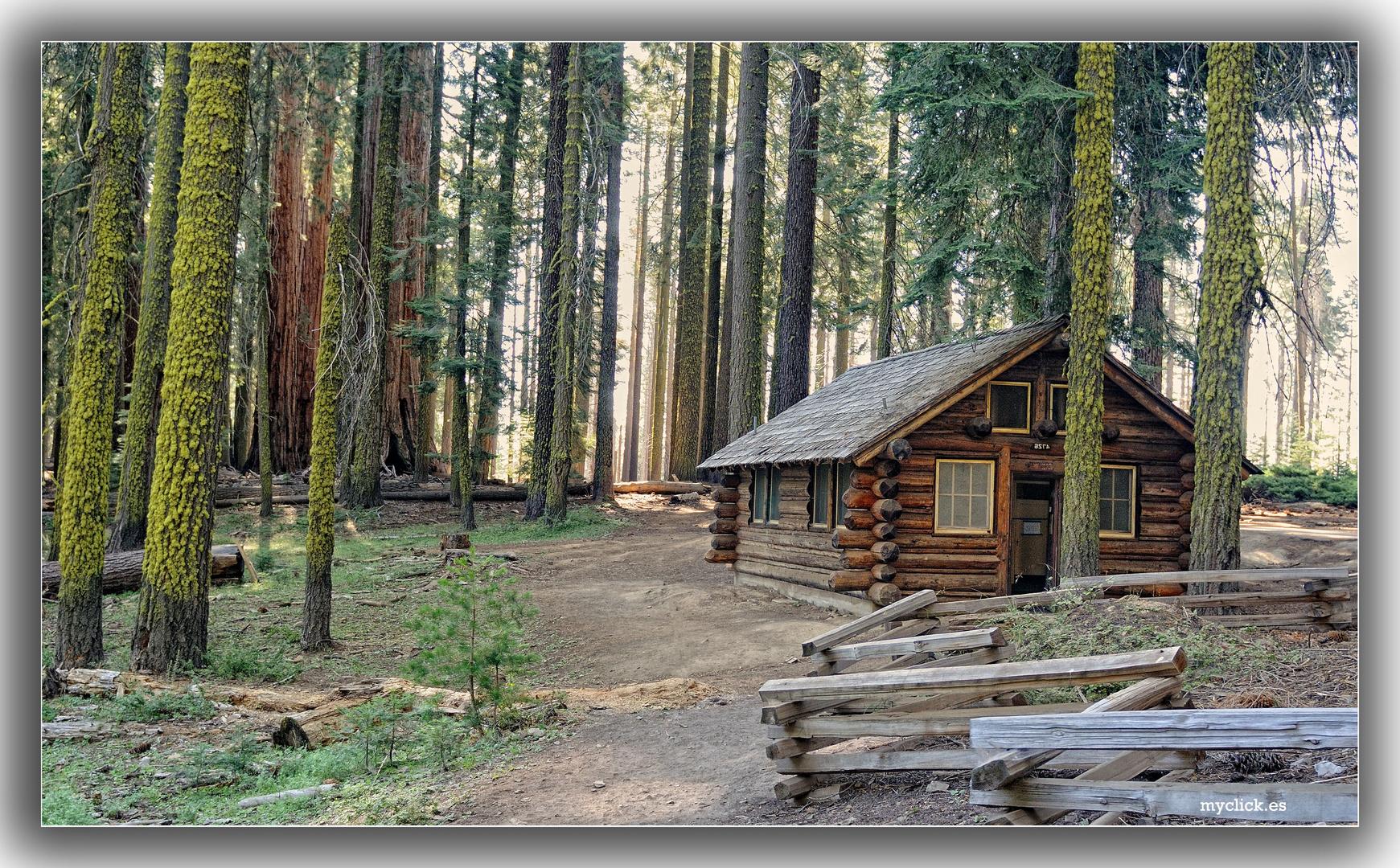 En el lejano oeste una casita en el bosque pn yosemite california usa imagen foto paisajes - Casitas del bosque ...