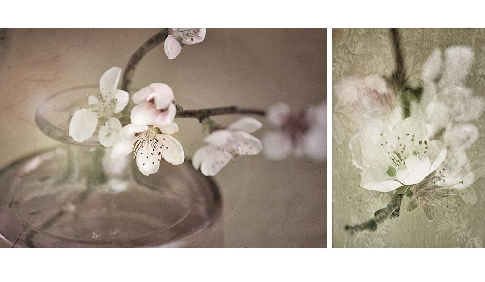 _en fleurs_