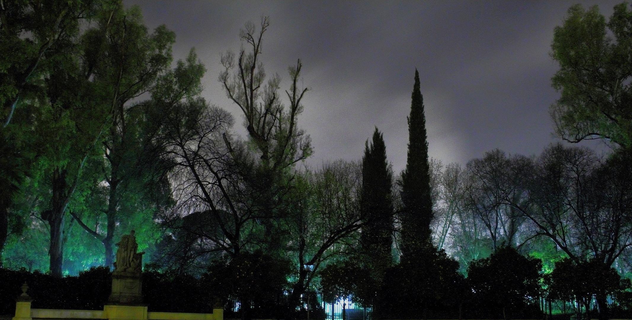 en la oscuridad