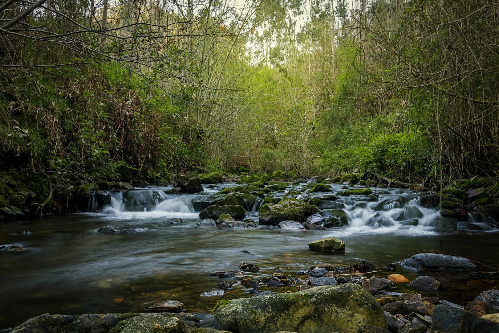 En la senda del agua (4)