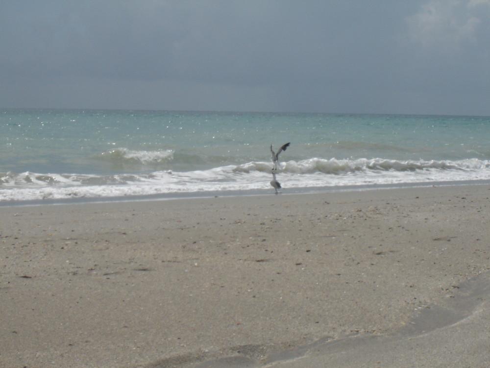 en lla playa