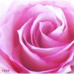 en rose