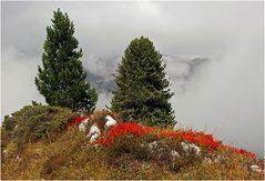 Ende eines Dolomiten-Herbstes
