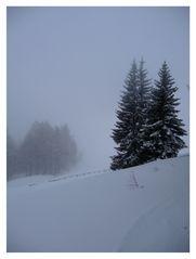 Endlich ein wenig Schnee