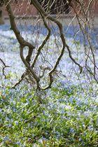 Endlich Frühling 3
