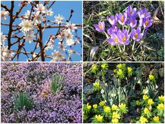 Endlich Frühling ...!!