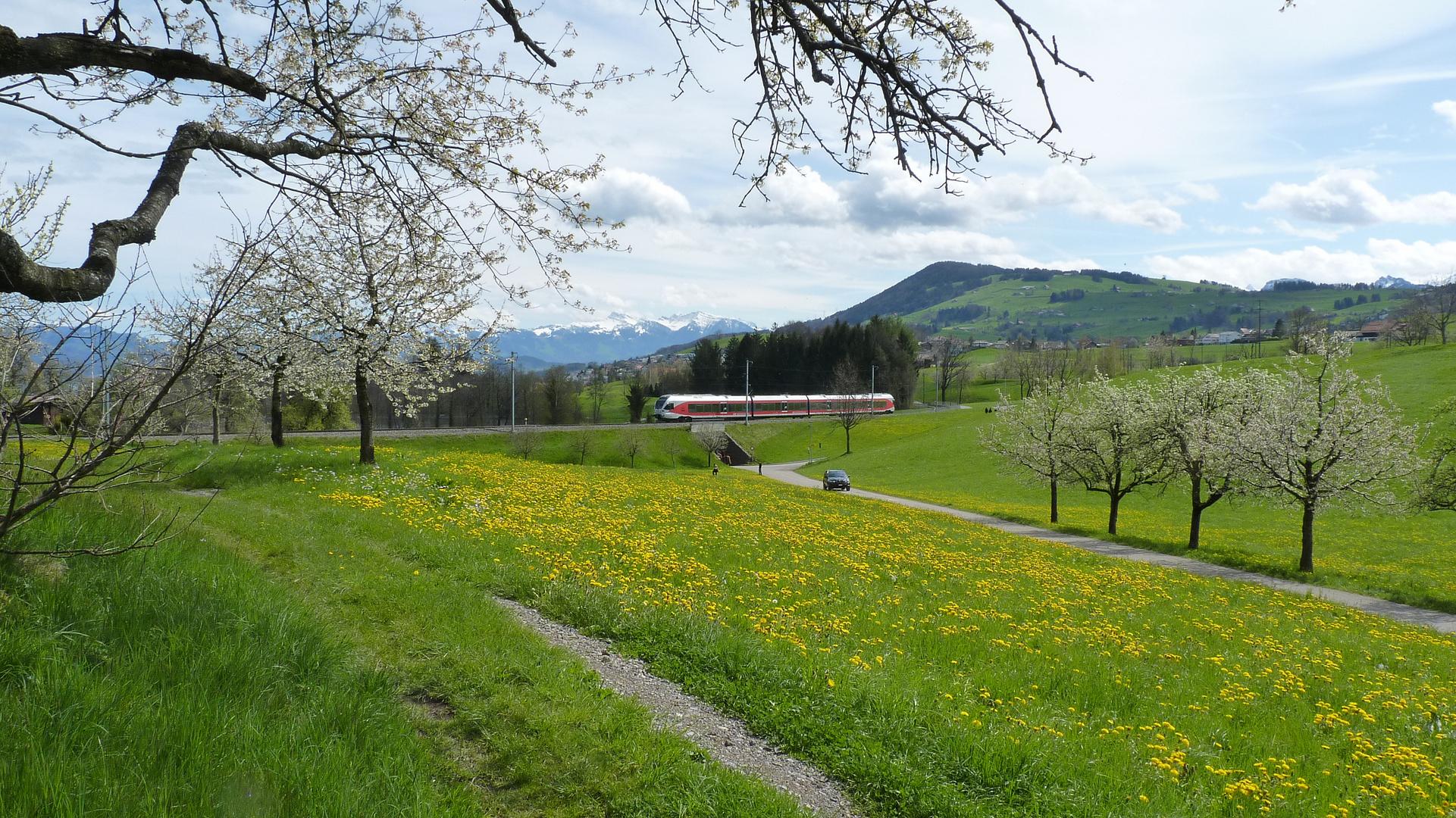 Endlich Frühling / Finalmente primavera / Enfin printemps..01