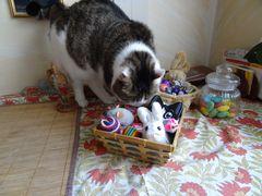 Endlich hat Susi ihr Osternest gefunden