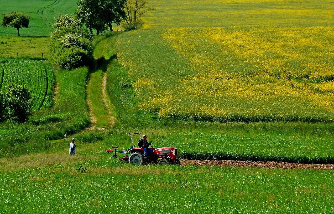 Endlich können hier die Landwirte auf den Feldern wieder etwas arbeiten, ...