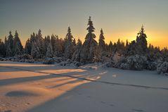 Endlich mal wieder Morgensonne ...