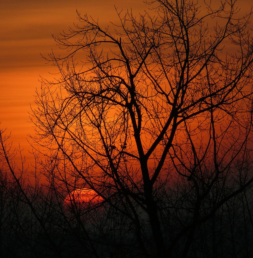 Endlich Sonne :-)